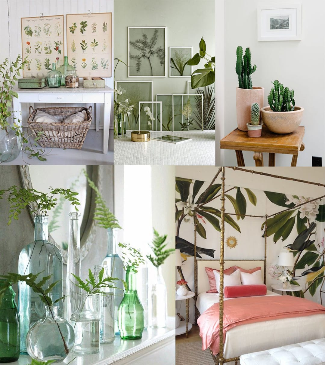 2017 Decor Trends: Botanical Spaces 3