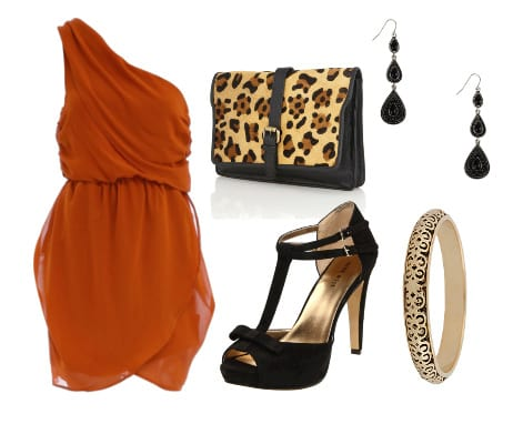 Polished Rust and Leopard Touch: Evening Look for $100 3
